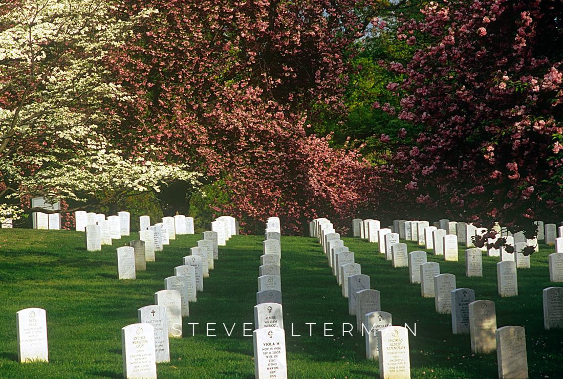 04 Arlington National Cemetery, Arlington, Virginia