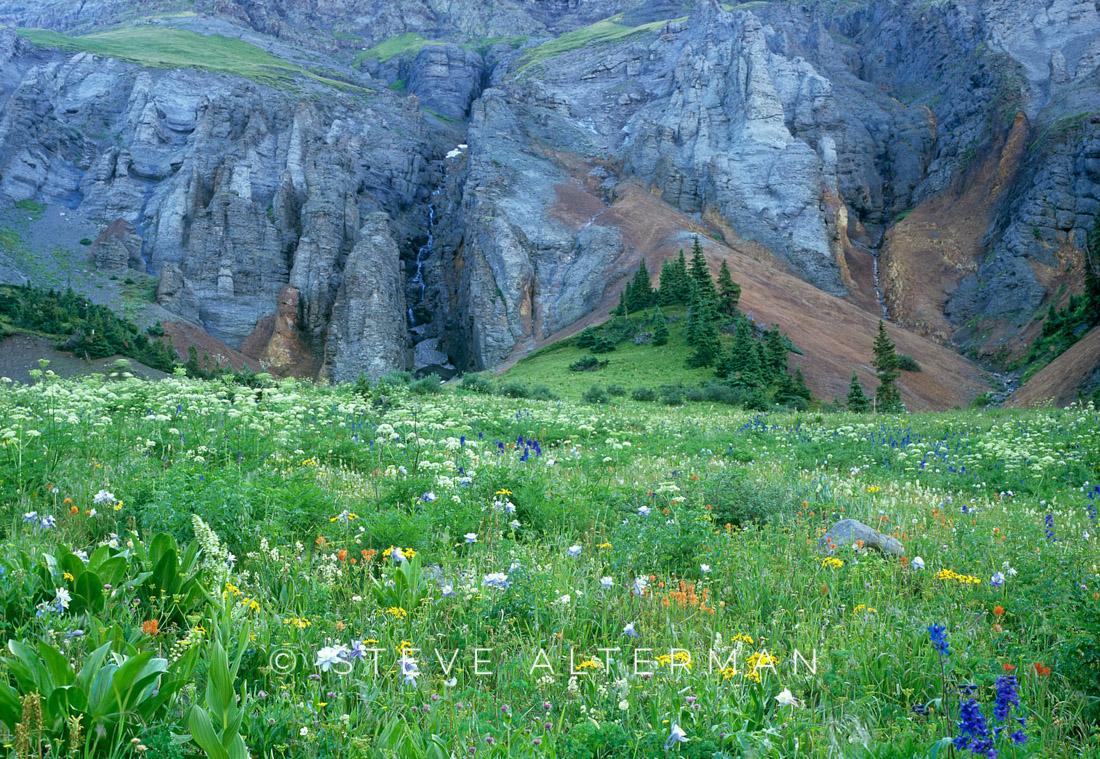 103 Wildflower Field, Ouray, Colorado