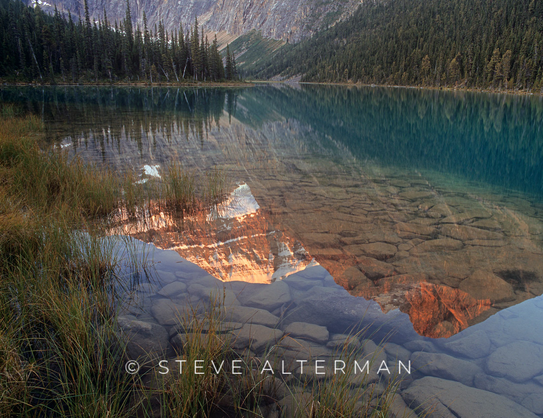 124 Mount Edith Cavell Reflected in Cavell Lake, Jasper National Park