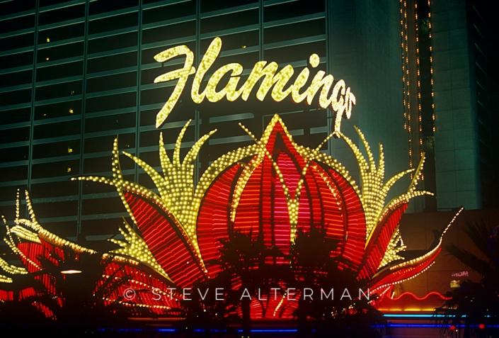 29 Flamingo Hotel, Las Vegas