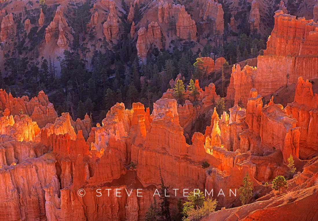 525 First Light at Inspiration Point, Bryce Canyon National Park