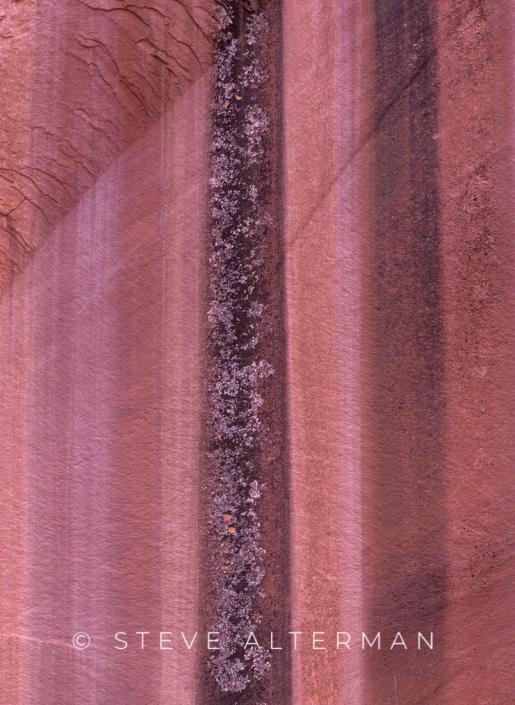 531 Desert Varnish, Grand Wash, Capitol Reef National Park