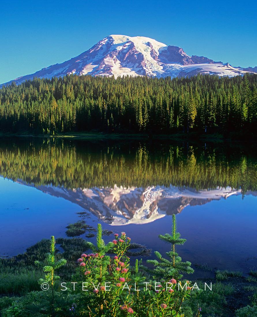 718 Reflection Lake, Mount Rainier National Park