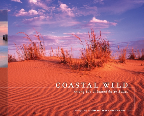Coastal Wild cover