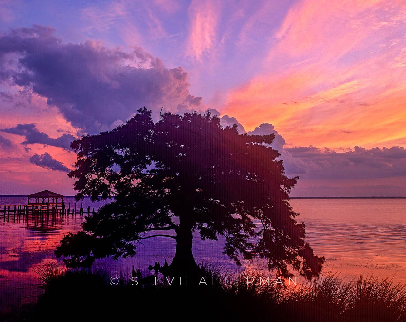 819 Cypress, Late Afternoon - Duck, North Carolina