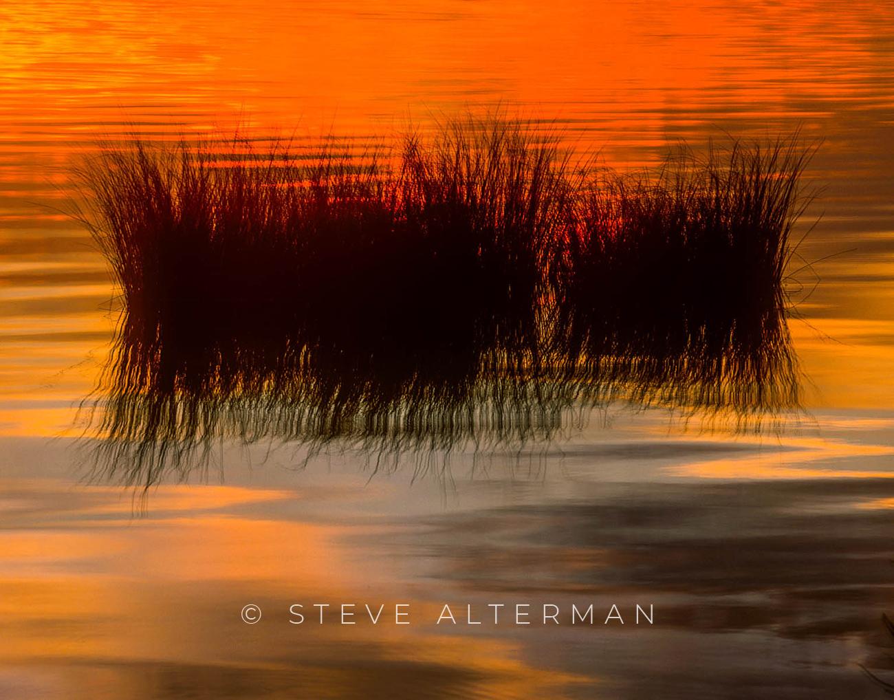 823 Sunset Reeds - Duck, North Carolina